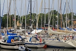 Europe - Sweden - Sailboats in the harbour